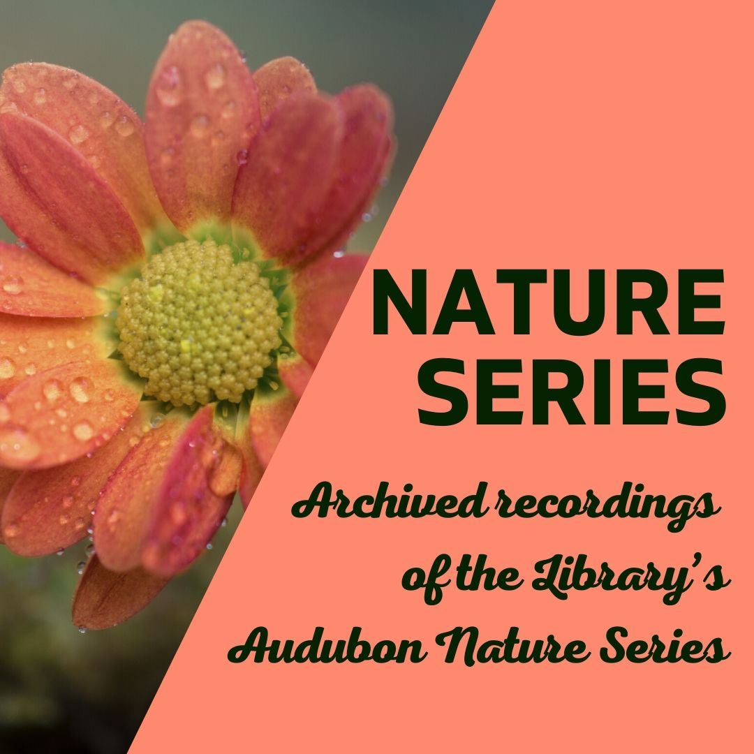 nature series program ad Opens in new window